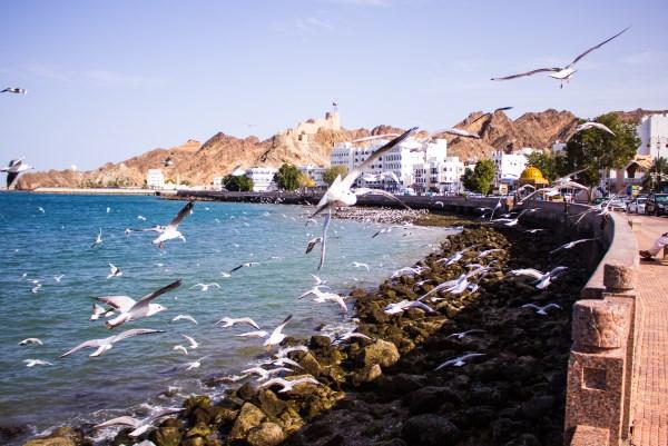 Costa de Muscat
