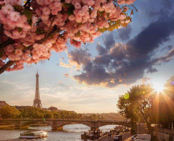Crucero fluvial por el Sena desde París