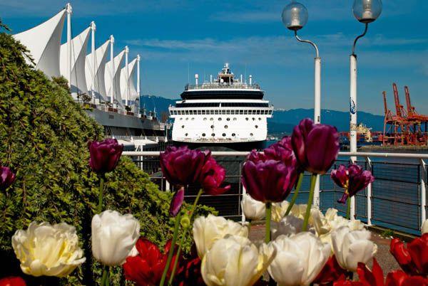 Razones para hacer un crucero en primavera