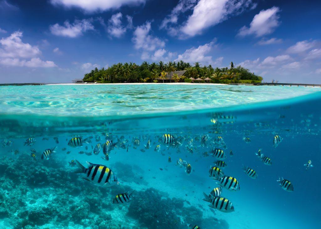 Islas Madivas crucero vuelta al mundo
